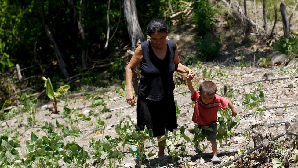 A woman and her son walk in their drought-affected plot in Honduras
