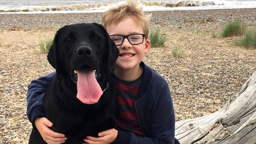 British Sign Language: GCSE plan after boy's campaign