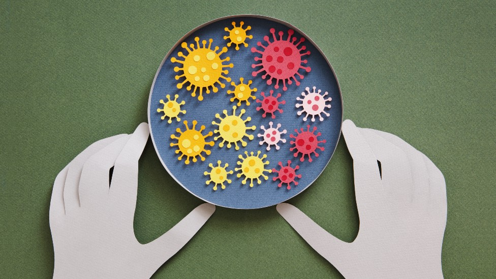 Ilustración de una placa de Petri con coronavirus