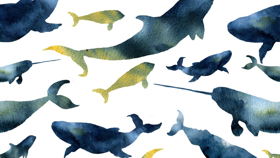 Watercolor seamless pattern with silhouettes of whales. Illustration with blue whales, cachalot, orca and narwhal isolated on white background. For design, prints or background