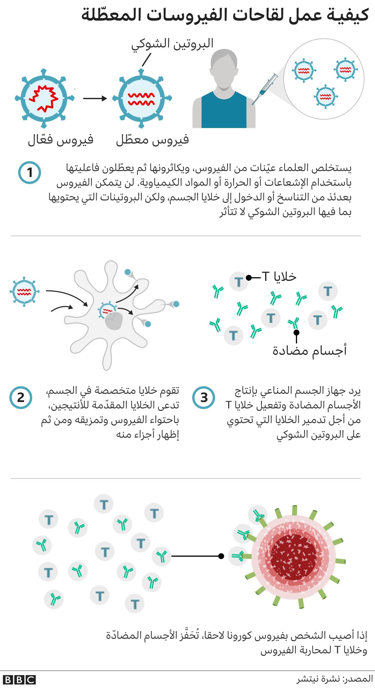 كيفية عمل اللقاحات المعطلة