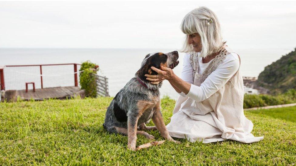 Novi molekularni uvidi u konverziju ljudskih u pseće godine koje obuhvata logaritamski zakon sugeriše da psi ulaze u srednje godine još brže nego što je većina vlasnika pasa podozrevala