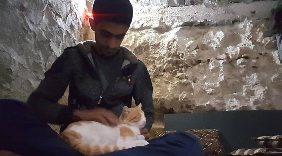 Salahova mačka