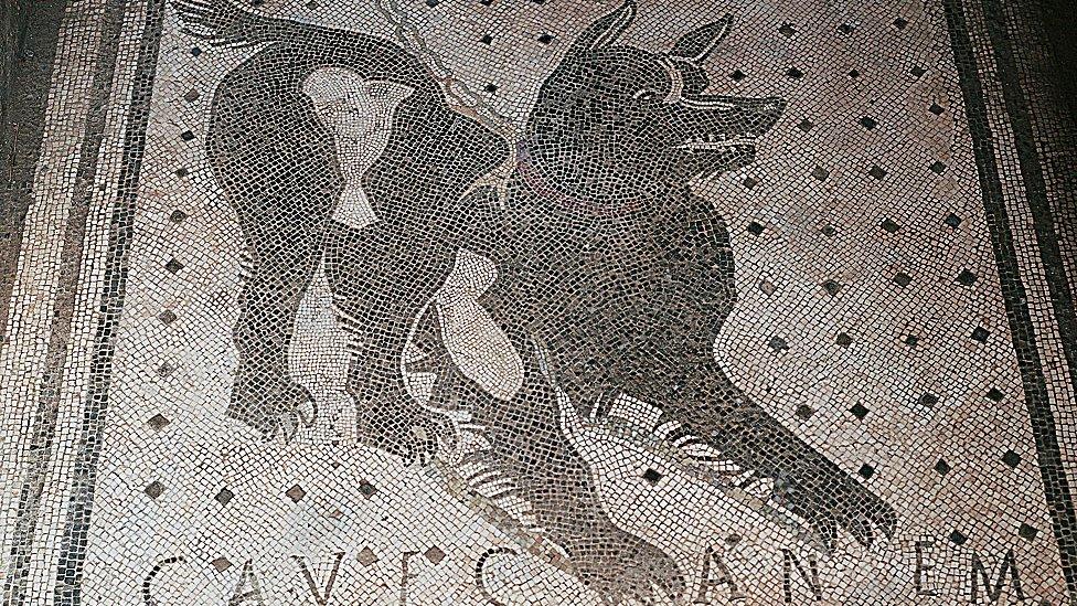 Cave Canem - Cuidado con el perro