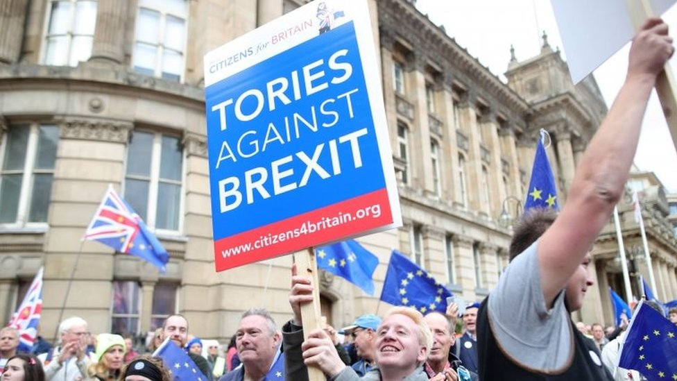 Anti-Brexit demonstrators
