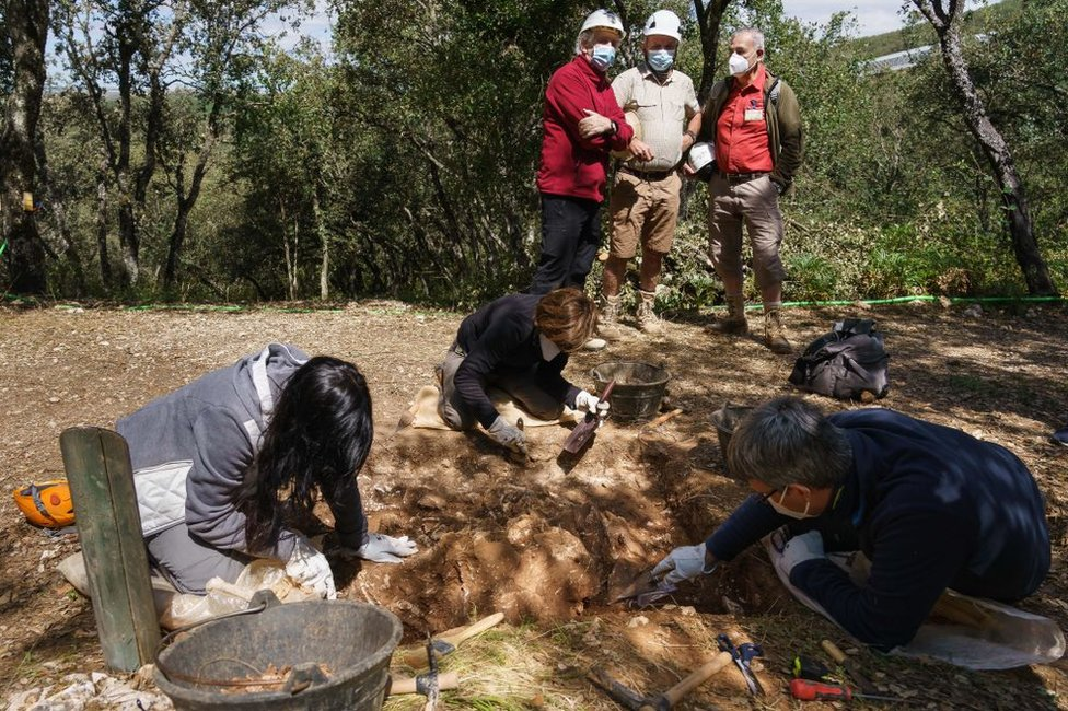 Juan Luis Arsuaga (de pie en el fondo, con camisa granate) en el yacimiento arqueológico de Atapuerca, en Burgos, España, en julio de 2020.