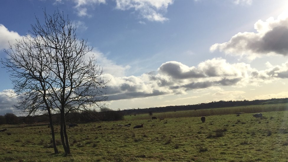 Work includes fencing off watercourses from livestock