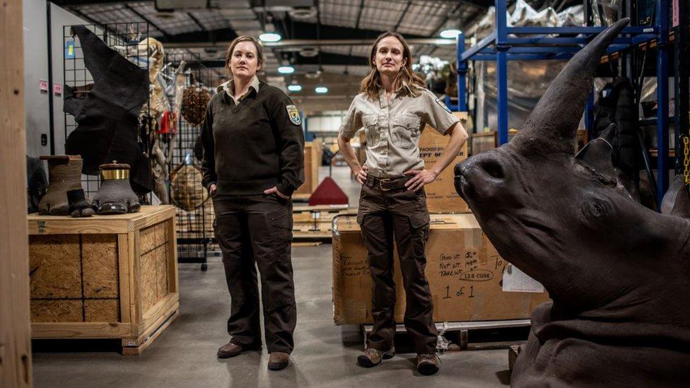 Elisa Dalberg i Sara Mecer objašnjavaju kako zaustaviti globalnu trgovinu divljih životinja