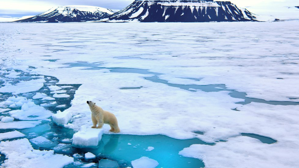 A panoramic shot of an Arctic frozen landscape, with a polar bear in view