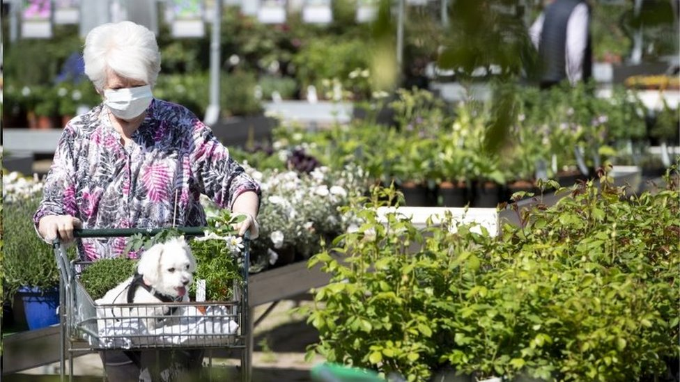 Why Are Mps Keen For Garden Centres To Re Open Bbc News