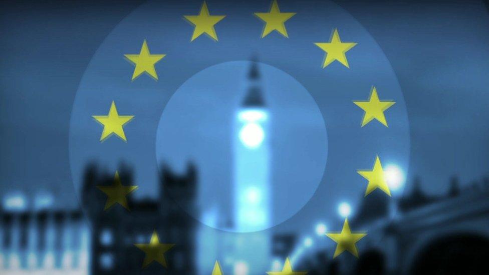 EU flag and Houses of Parliament