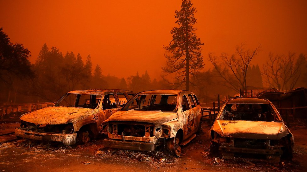 A huge wildfire killed 86 people in Paradise, California, last year