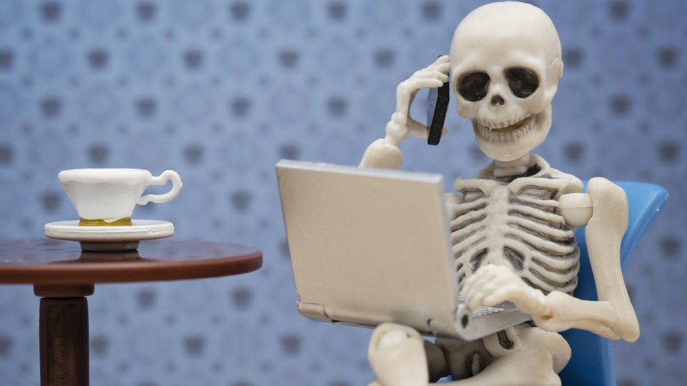 Skeleton in front of a laptop