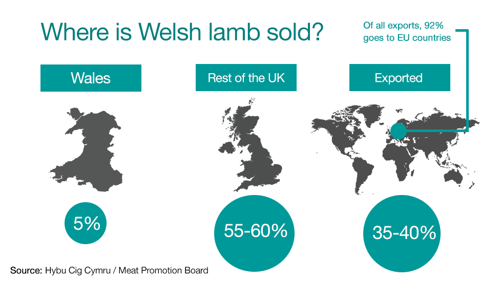 A chart showing where Welsh lamb is sold. Five per cent is sold in Wales, 55 to 60 per cent to the rest of the UK and 35 to 40 per cent is exported