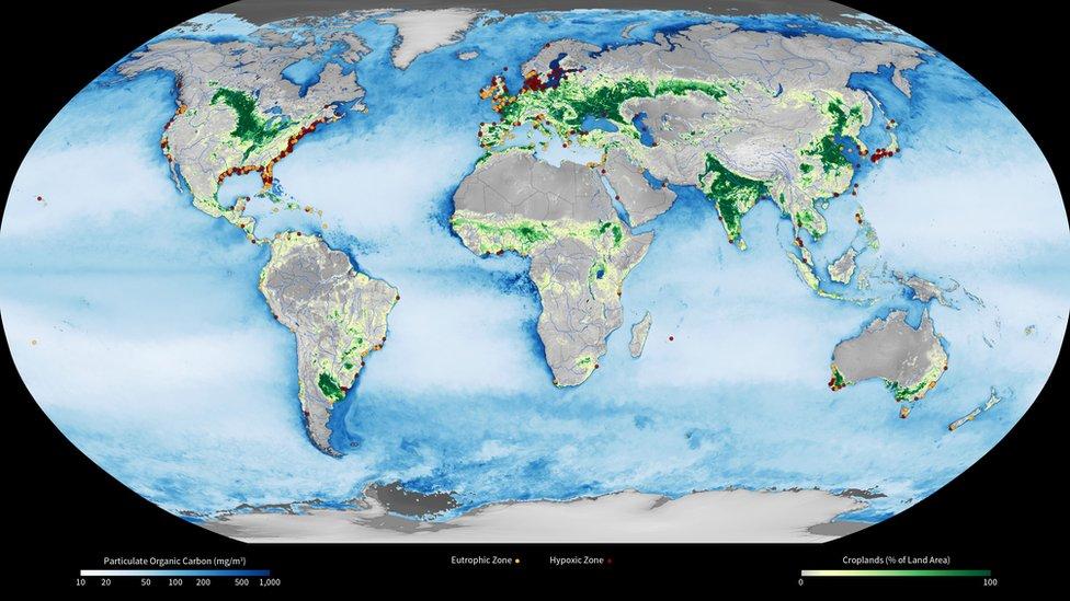 Diversas zonas hipóxicas en el mundo