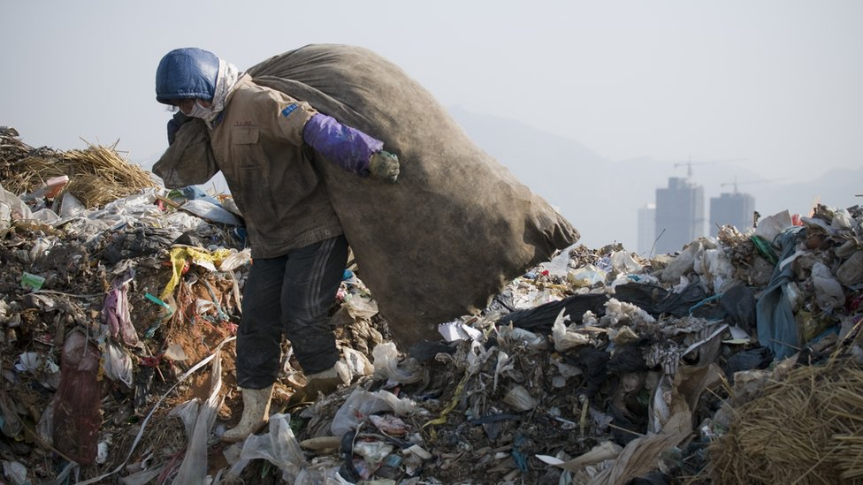 A woman collecting plastic at a dump in China. Millions of tonnes of plastics are wasted every year.