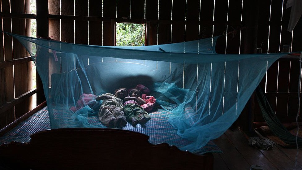 Gejala Penyakit  Obat Tradisional Sleeping under a bed net