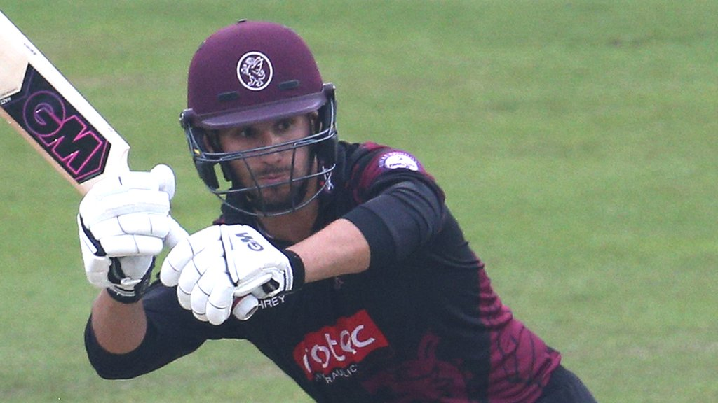 Lewis Gregory: Somerset all-rounder 'has offers from four other counties'