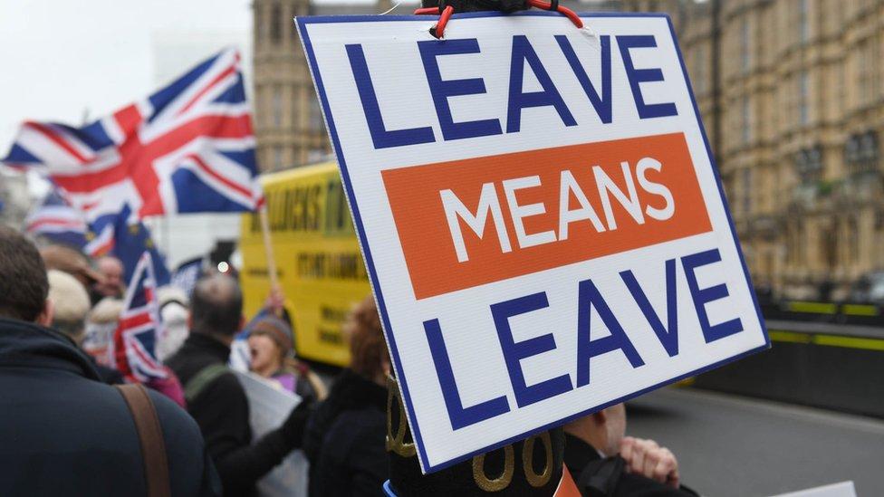 英國一些人士強烈要求硬脫歐,反對與歐盟保持聯繫