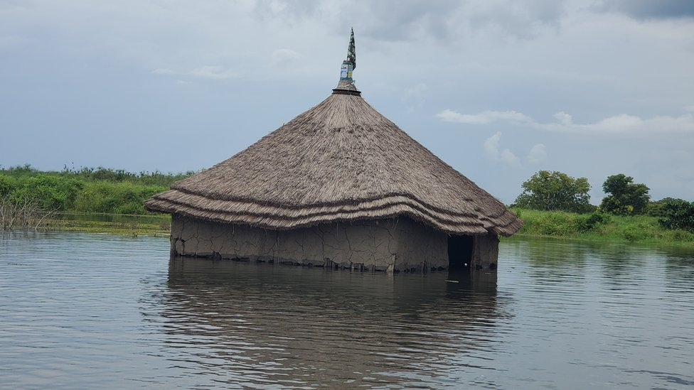 Home submerged by water