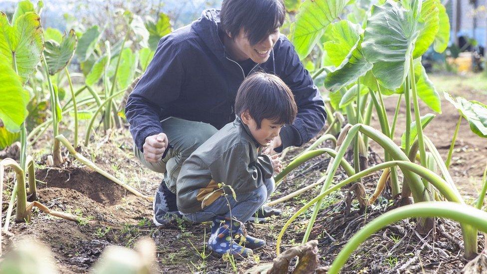 أب وابنه يلاحظان نباتات نامية في حقل
