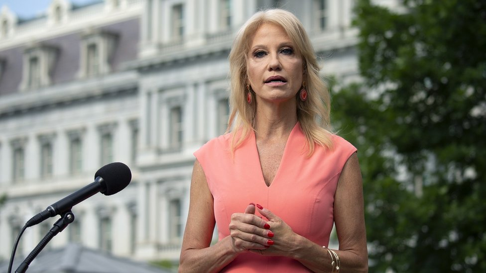 Senior Counsellor Kellyanne Conway speaks to members of the media outside the White House in Washington D.C., USA, 17 July 2020