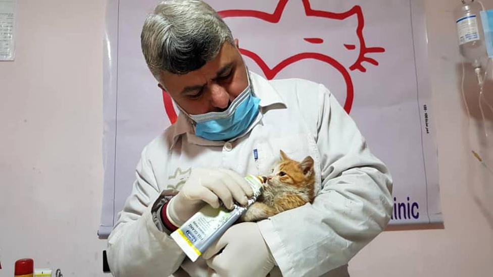 Doktor Jusef, veterinar u utočištu