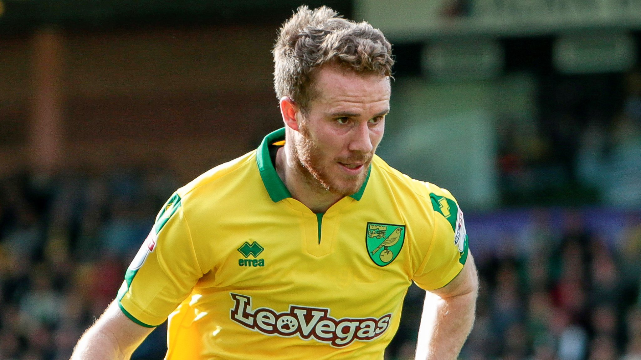 Marley Watkins: Bristol City sign Norwich and Wales forward for £1m