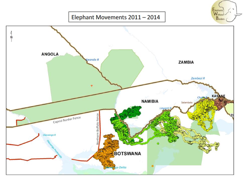 Elephant movements 2011 -2014