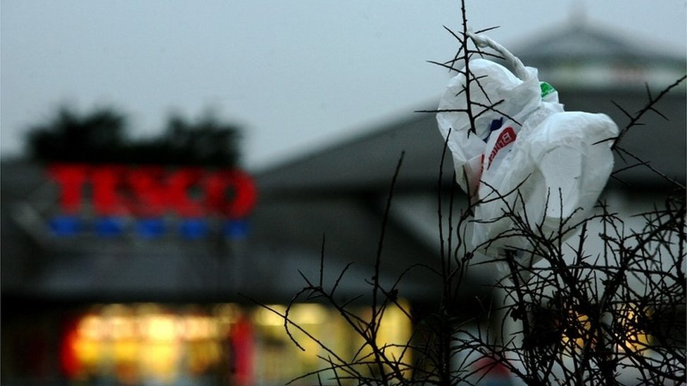 A plastic bag wrapped round a tree in the foreground of a Tesco sign