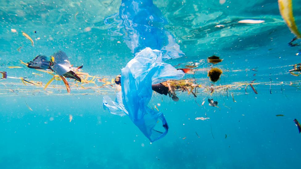 Plástico en el océano