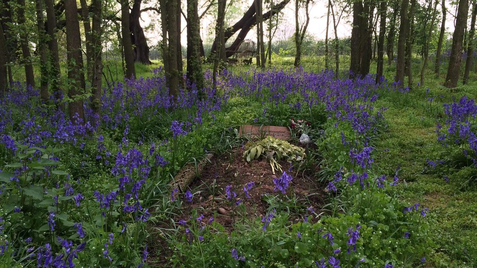 A Respect Green Burials grave in woodland in north Nottinghamshire