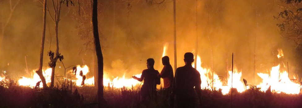 """This handout photo taken on 25 September 2015 and released on 9 October 2015 by the Borneo Orangutan Survival Foundation shows fires continuing to rage late at night at the Samboja Lestari Orangutan Reintroduction Program site in Samboja, in Indonesia""""s East Kalimantan"""