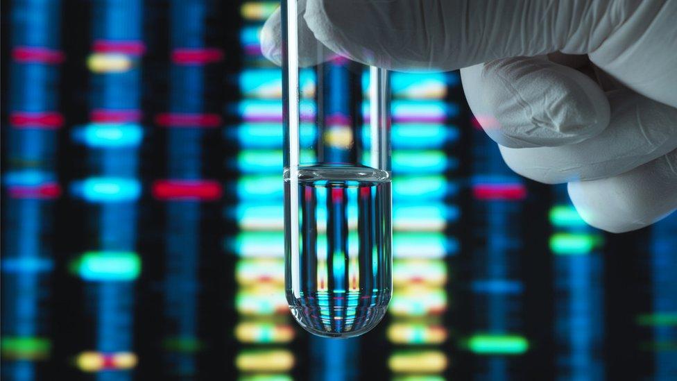 DNA örneği