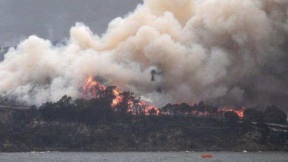 Incendio en Autralia
