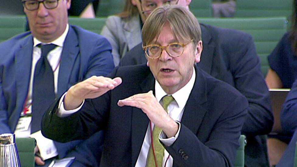 Guy Verhofstadt warns MPs of 'two decade' Brexit ratification