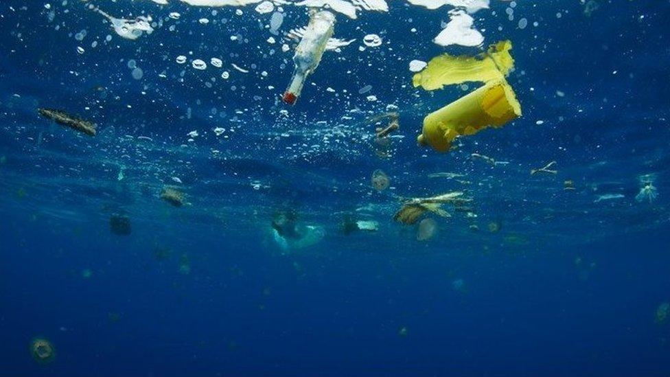Bahkan di daerah yang paling terpencil di lautan terbuka, flotsam plastik dapat ditemukan, dengan konsekuensi yang luas untuk kehidupan laut