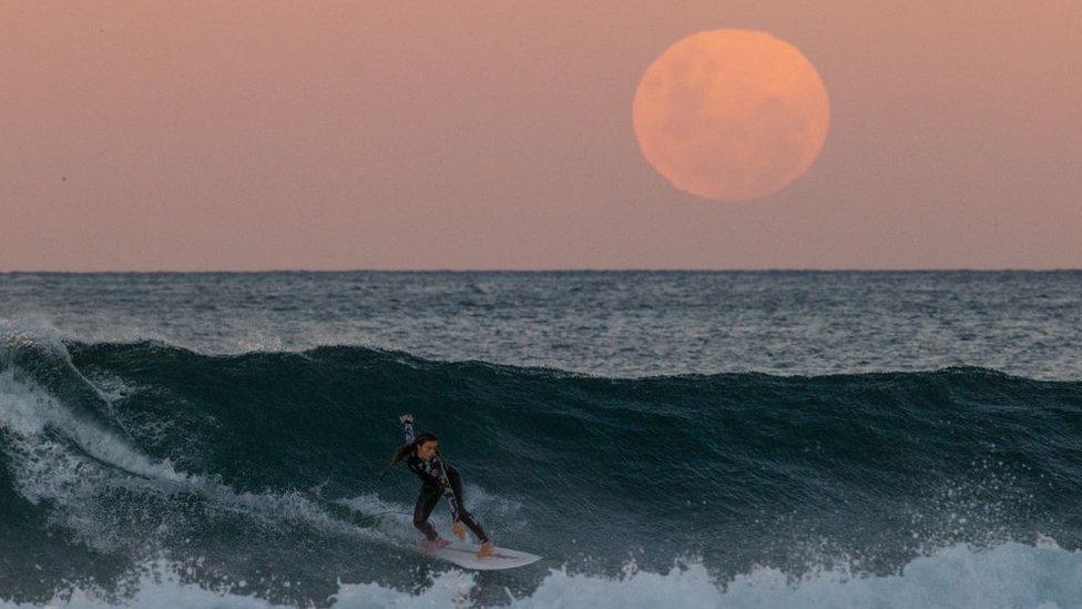 Una surfista en Sídney, Australia a la luz de la luna de sangre.
