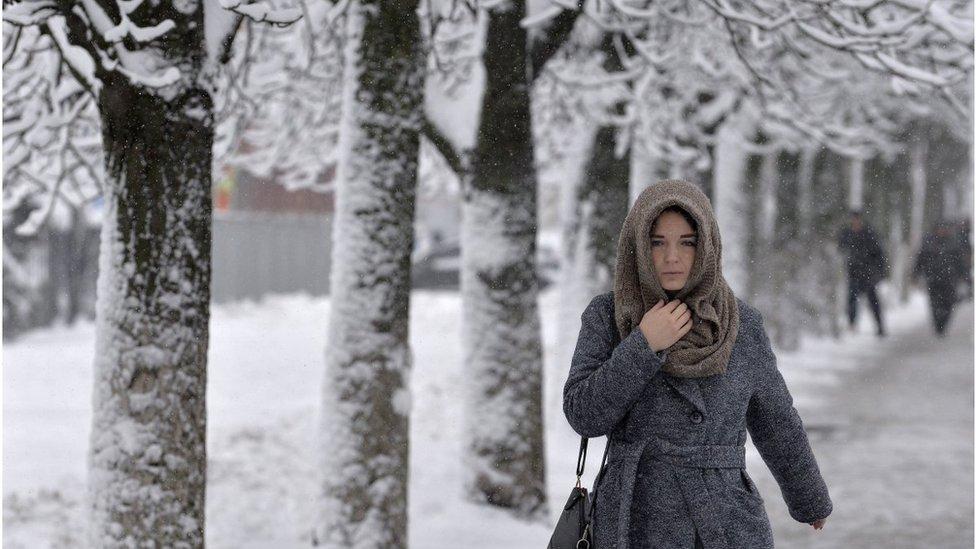 Погода в Україні: де обмежено рух та чи довго йтиме сніг
