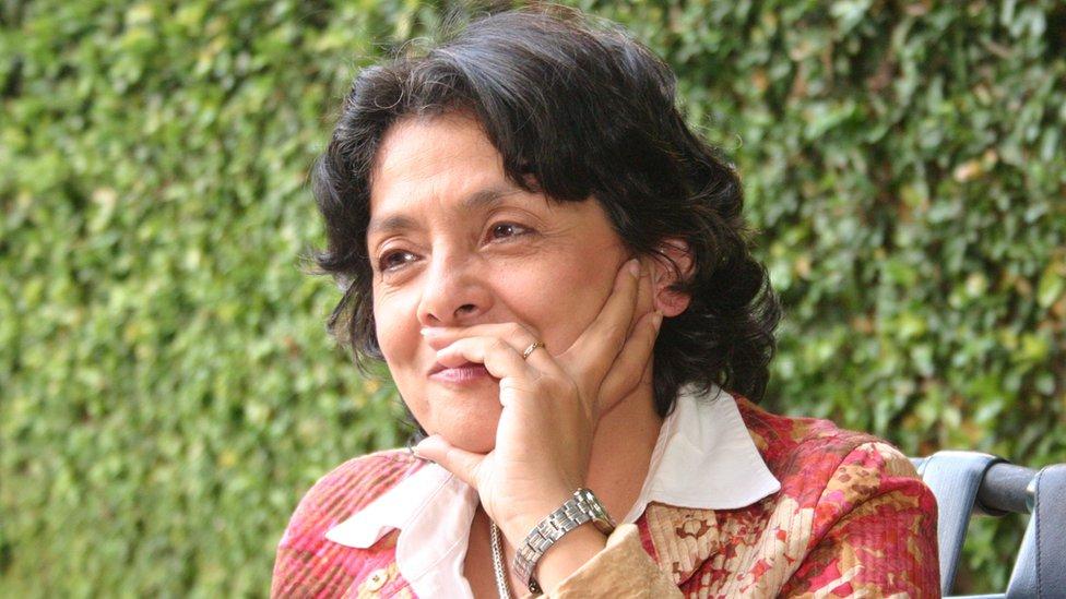 Professor Margarita Lopez Maya