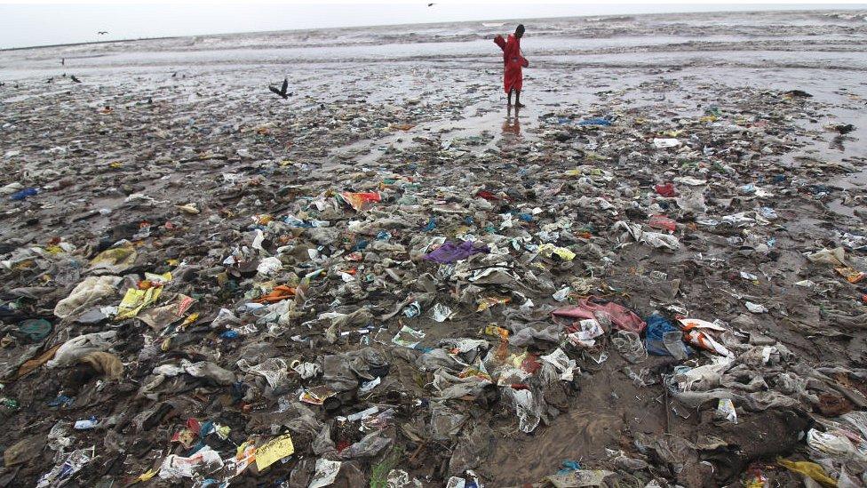 印度一個海灘上的塑料垃圾