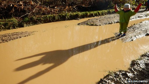 child looking at a giant puddle