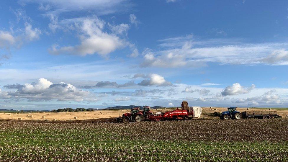Tractors on farm