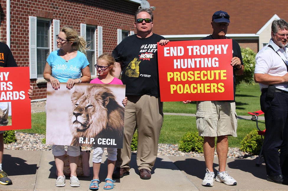 Protests in Minnesota over Cecil the Lion