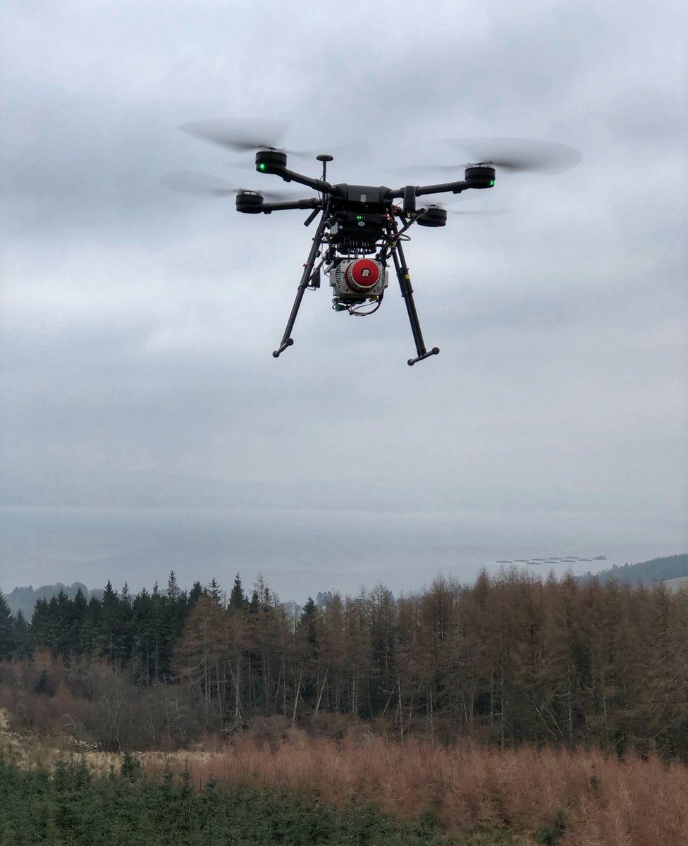 drone surveying forest