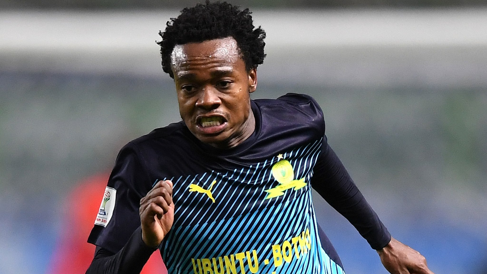 'A player for the future' - Brighton sign South Africa striker Tau