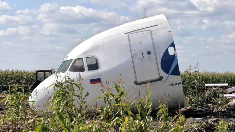 Фото: как разбирали приземлившийся в кукурузном поле самолет A321