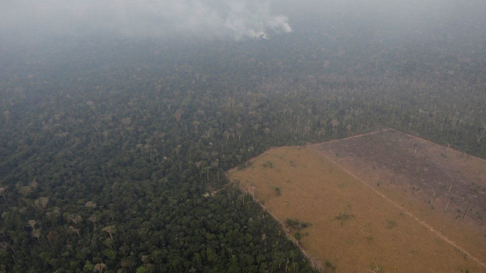 Aerial picture of the Amazons with a deforested area