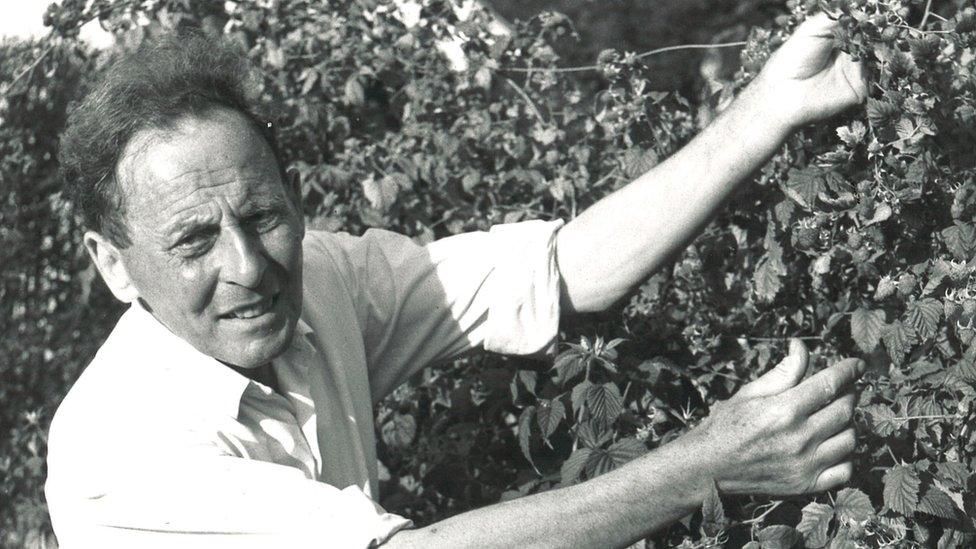 Donald Watson handling a fruit bush