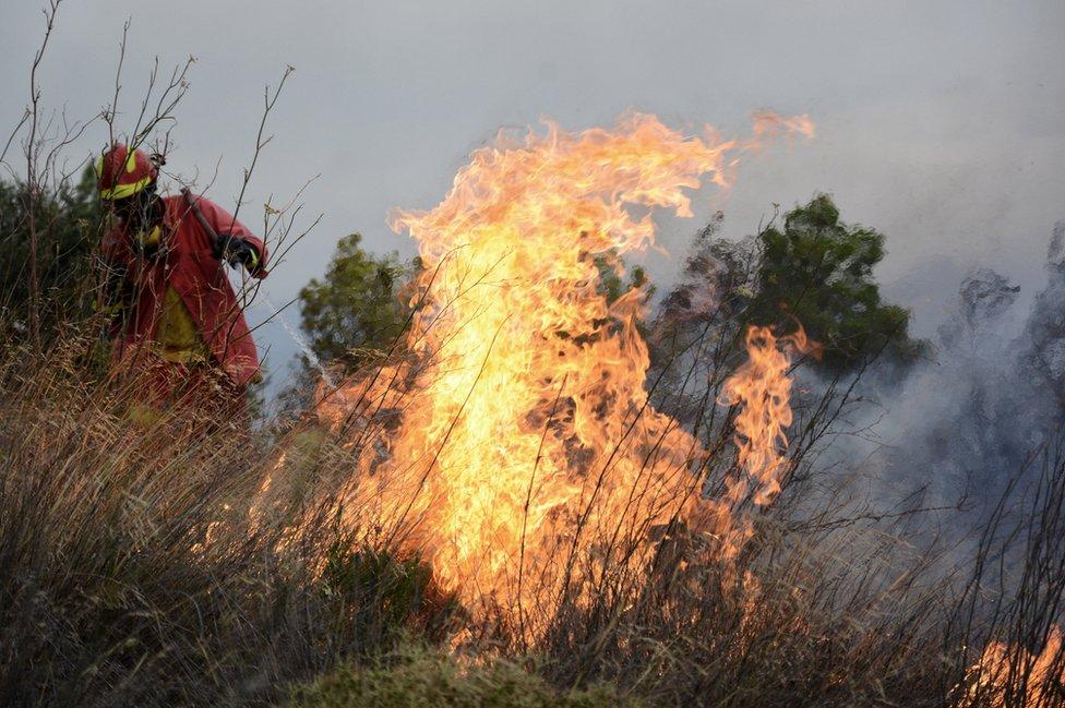 Bomberos intentan apagar el pasto seco en llamas en Grecia